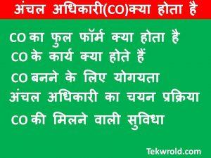 अंचल अधिकारी(CO)क्या होता है|CO full form in Hindi