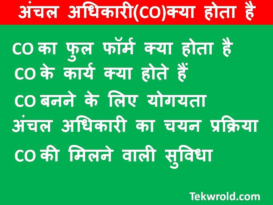 अंचल अधिकारी(CO)क्या होता है CO full form in Hindi